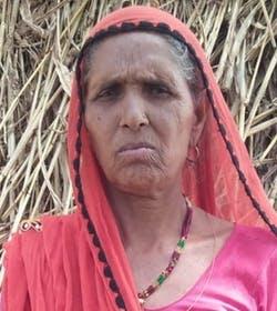 Bhula